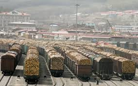Russia might restrict roundwood exports to China - Timber Industry News